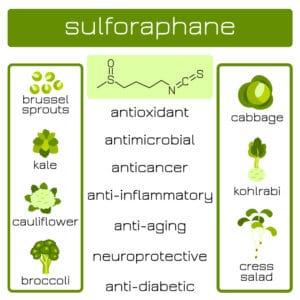 Infographics. Sulforaphane organic compound