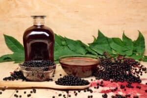 Avoid Elderberry